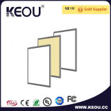 ISO9001工場による30X60cm LEDの照明灯の製造
