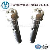 Ancre de cale d'acier inoxydable/par le boulon/boulon d'expansion