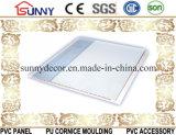 Plafond de estampage chaud de Panneau-PVC de PVC, panneau de mur de PVC