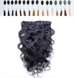 Curly Hair ExtensionインドHuman Hairのクリップ