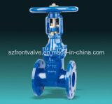 Válvula de porta de aumentação da haste do RUÍDO do ferro de molde