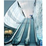 Camminata mobile delle scale mobili del carrello di acquisto con illuminazione del corrimano