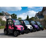 2 Personen-elektrisches Fahrzeug für das Familien-Einkaufen