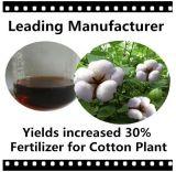 Fertilizante especial para la planta de algodón