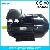 Motor trifásico eléctrico asíncrono de la jaula de ardilla del compresor de aire de la bomba de agua de la inducción de la CA de la eficacia alta de Ie2 Ie3