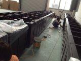 Het Stevige Houten Huis Furnitures van de okkernoot