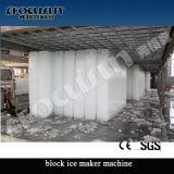 Planta en contenedor industrial del bloque de hielo