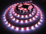 Luz de tira del alto brillo 12/24V LED de la decoración de la Navidad