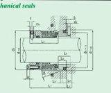 Pumpen-Gebrüll-mechanische Dichtung (HBM1)