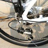 """24の"""" Optional Colors (LN24C06)の都市Electric Bike"""