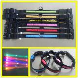 Collier de chien clignotant LED Produits de sécurité de nuit Colliers pour animaux de compagnie