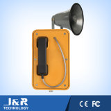 De openlucht, Koude of Hete van het Weer Telefoon van de Telefoon, van de Telefoon van de Luidspreker