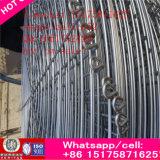 Enxerto quente da soldadura do aço de carbono Q235B da venda na flange feita em China