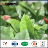 PVC Coated Green Plastic Artificial Plant Leaf Fence Outdoor mit Cer