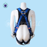 Mettere Belt a sedere con Fixed a tre punti Mode (EW0118BH)