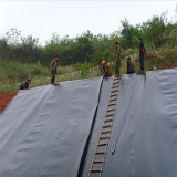 HDPE materiale impermeabile Geomembrane per la fodera dello stagno del materiale di riporto