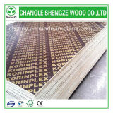 WBP Glue 18mm com Printed Logo Film Faced Plywood