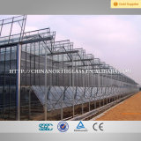 좋은 Quality High Buliding 4mm Solar Reflective Glass