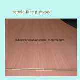 Factory Sales Direct Fancy Plywood / gelamineerd Multiplex / Poplar Plywood