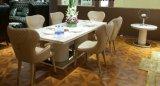 Insieme di lusso del sofà del cuoio del salone di disegno italiano