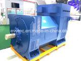 Doppelte Peilung-Hochspannung Wechselstrom-synchrone Generatoren mit Pmg