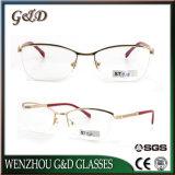 La última lente inoxidable Eyewear del marco óptico de los vidrios