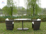 가정 가구 리오 안뜰 고정되는 옥외 안뜰 등나무 소파 고리 버들 세공 부분적인 소파 정원 가구 세트