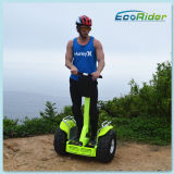 Handle 4000 WattのRoad Scooter Self Balancing Carを離れて