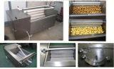 Máquina de lavar vegetal Home industrial do Taro de Apple da batata da cenoura