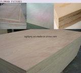 [12مّ] خشب رقائقيّ تجاريّة مع يشبع حواء لب أثاث لازم درجة