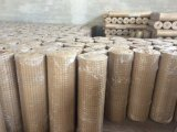 Qualitäts-Kohlenstoffstahl galvanisierte geschweißten Draht-Zaun