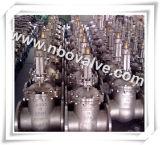 クラス2500ギヤ高圧シールのゲート弁(Z540Y)