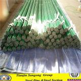 Galvanisiertes äußere Spray-Farbe Stahlrohr