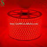 Luz de tira flexible roja de SMD5050 LED