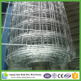 中国の工場熱い浸された電流を通された牛塀
