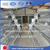 Cage de poulet de couche de matériel de volaille d'agriculture à vendre