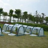 De binnen Installatie van de Serre kweekt Tent