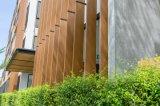 High-density деревянные доски пластмассы Composite/WPC декоративные