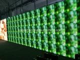 HD SMD3535フルカラーLEDビデオスクリーンP5.95 LEDのメッセージ表示ダンス・フロアのビデオ壁