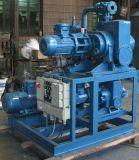 Wurzel-Wasser Ring-Vakuumpumpe-System