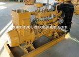Biomassa Genset, gassificatore della biomassa, potere Plantbiomass Genset, gassificatore della biomassa, centrale elettrica di gassificazione della biomassa di gassificazione della biomassa