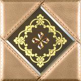 El nuevo panel de pared del diseño 3D para la pared y el techo Decoration-1106