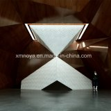 Le panneau contemporain ignifuge extérieur de la caractéristique 3D pour le public mure la décoration
