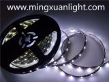 極度の明るい12Vは5050 300SMD RGB LEDライトストリップを防水する