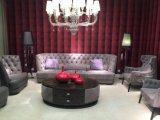 Serie della mobilia del salone ricoperta tessuto di cuoio italiano di Nubuck di disegno