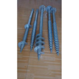Ground galvanizado Screws para Highway