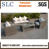 柳細工の屋外の家具か新しいデザイン藤のソファーの一定のソファーの家具(SC-B8219)