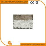 Gbpgl-300 mozaïek die Machine/Graniet/Marmeren Machine vormen