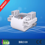 Carrocería del laser I-Lipo de 336 diodos que adelgaza la máquina