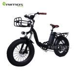 Bici eléctrica plegable fresca vendedora caliente para los extranjeros del alquiler
